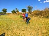 Gathering weeds
