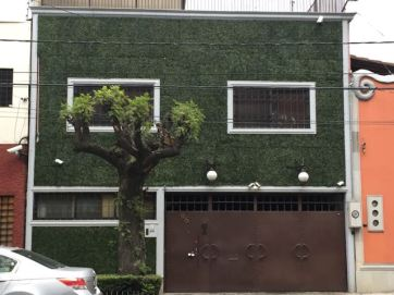 A living wall on a local home