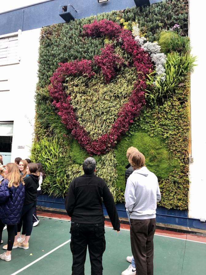 The Sacred Heart Living Wall
